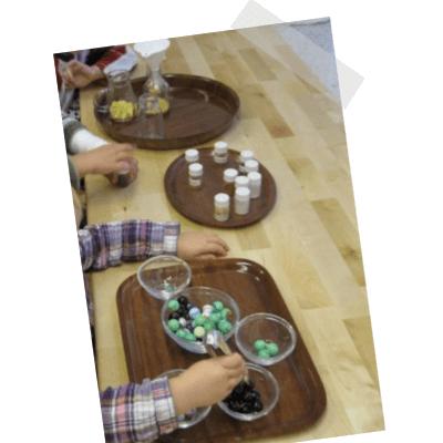 Forschermaterial - Murmeln und Schalen