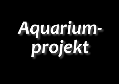 Aquariumprojekt